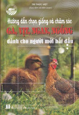 Hướng dẫn chọn giống và chăm sóc gà vịt ngan ngỗng dành cho người mới bắt đầu